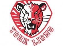 160520-york_logo